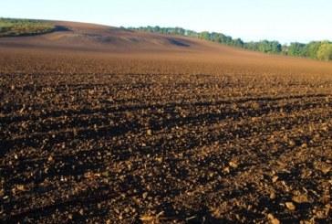 Zmęczenie gleby