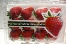 Fruit Logistica 2017. Owoce, opakowania…
