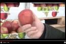 W Rosji przechwycono 59 ton polskich jabłek