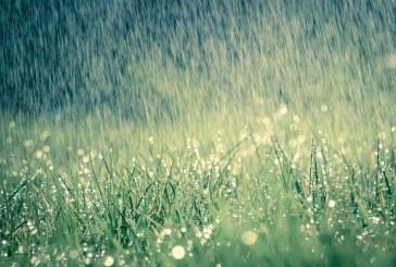 W dwa dni spadnie tyle deszczu, ile powinno przez cały kwiecień