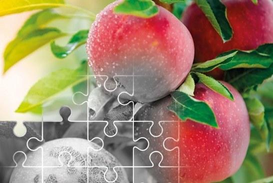 """""""Parch jabłoni"""" – nowa książka w ofercie wydawnictwa Plantpress"""
