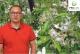 Komunikat sadowniczy – zalecenia  PROCAM z 17.05