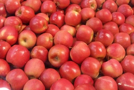 Układanka cenowa jabłek