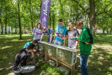 Zajęcia o murarce ogrodowej w szkole w Sichowie Dużym