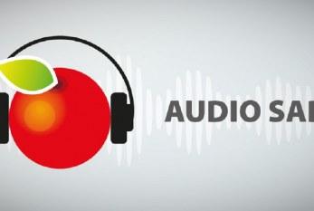 Audio Sad – nowa aplikacja dla zapracowanych