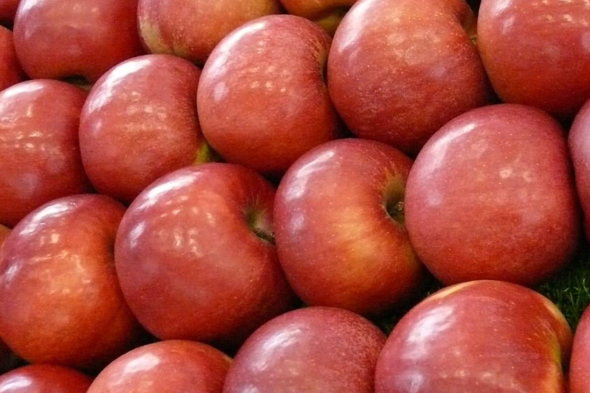 Azerbejdżan – nowy gracz na rynku jabłek i czereśni