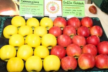 Nowe jabłka – m.in. dla alergików oraz o barwnym miąższu