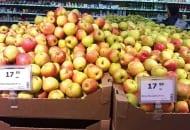 FOT. 4. Owoce są sprzedawane jako deserowe na rynku krajowym