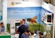 Beehive – międzynarodowy projekt firmy Pszczelinka