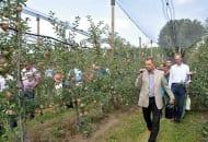 Fot. 2. Po wilanowskim sadzie oprowadzał sadowników m.in. dr hab. Dariusz Wrona