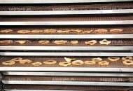 FOT. 6. Plastry jabłek na półkach suszarni OTS 11