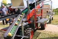 FOT. 5. Pluk-O-Trak