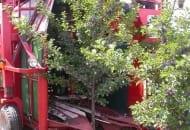 Fot. 1. Kombajn do zbioru wiśni zaczepiany