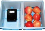 FOT. 10. Pudełko z sensorem i owocami wykorzystywane w technologii DCA