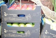 FOT. 1. Jednolite opakowania dla jabłek sandomierskich