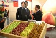 Fot. 6. Amerykańskie gruszki promował wizerunek prezydenta Obamy