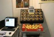 Fot. 8. Urządzenie usprawniające precyzyjne pakowanie gruszek w kartony o określonej masie