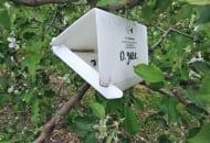 FOT. 4a. Pułapka feromonowa dla owocówki jabłkóweczki