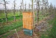 FOT. 9. Panel z formatek umieszczony w skrzynkach na owoce i ustabilizowany drewnianym palem
