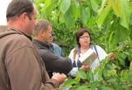 Fot. 6. Dr E. Rozpara oprowadzała sadowników po kwaterach z czereśniami