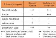 Tab 1. Skuteczność substancji grzybobójczych w stosunku do poszczególnych faz N. ditissima (za P. van Arkelem)