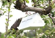 FOT. 1. Pułapka feromonowa do odławiania motyli owocówki jabłkóweczki