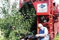 FOT. 3. Kombajn do zbioru przemysłowych owoców pestkowych, podczas zbioru śliwek