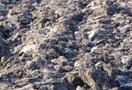 FOT. 3. Gleba wtzw. ostrej skibie