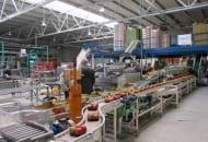 Fot. 9. Trzy  linie  pakujące pozwalają przygotować towar zapakowany w kartony, woreczki oraz na tackach