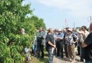 6-2011-manewry-ogrodnicze-z-quadami-w-tle-fot.10.jpg