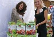 Fot. 2a. Stoiska z Sandomierskim Sokiem Jabłkowym podczas Europejskiego Święta Jabłka w 2012 r.