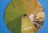 FOT. 2. Skala barw do oceny barwy podstawowej gruszek