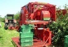 Nowości w mechanizacji sadownictwa (cz. II) – Zbiór owoców