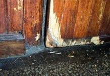 Zwalczanie gryzoni w pomieszczeniach gospodarskich