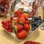 Fruit Logistica 2010