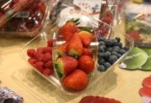Fruit Logistica 2010