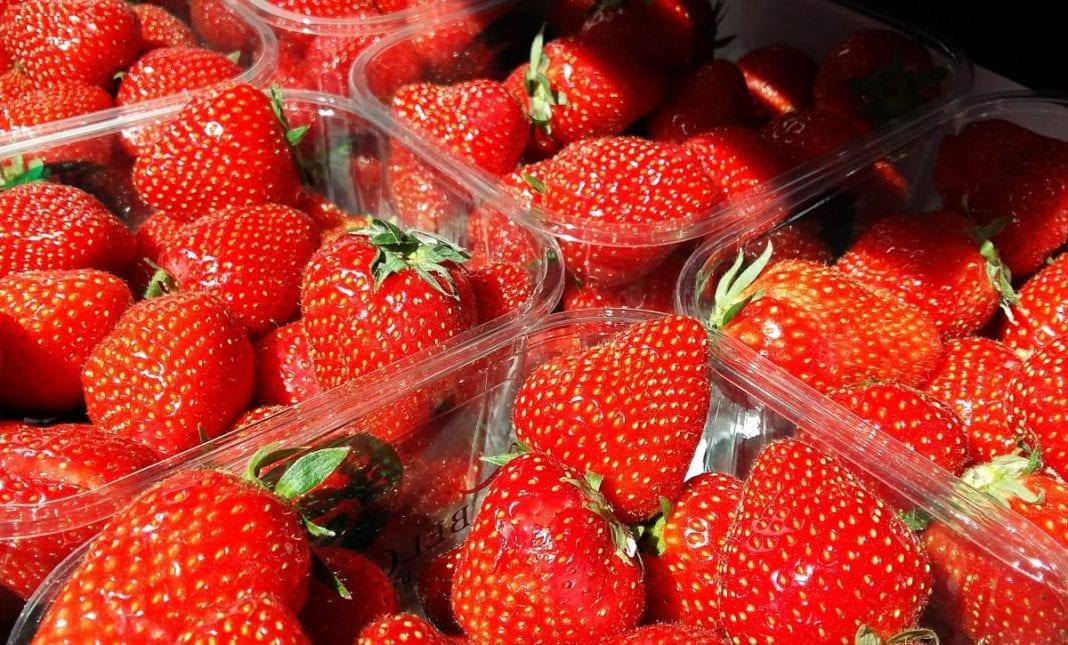Egipski eksport owoców i warzyw do Rosji wzrósł prawie 40 proc.