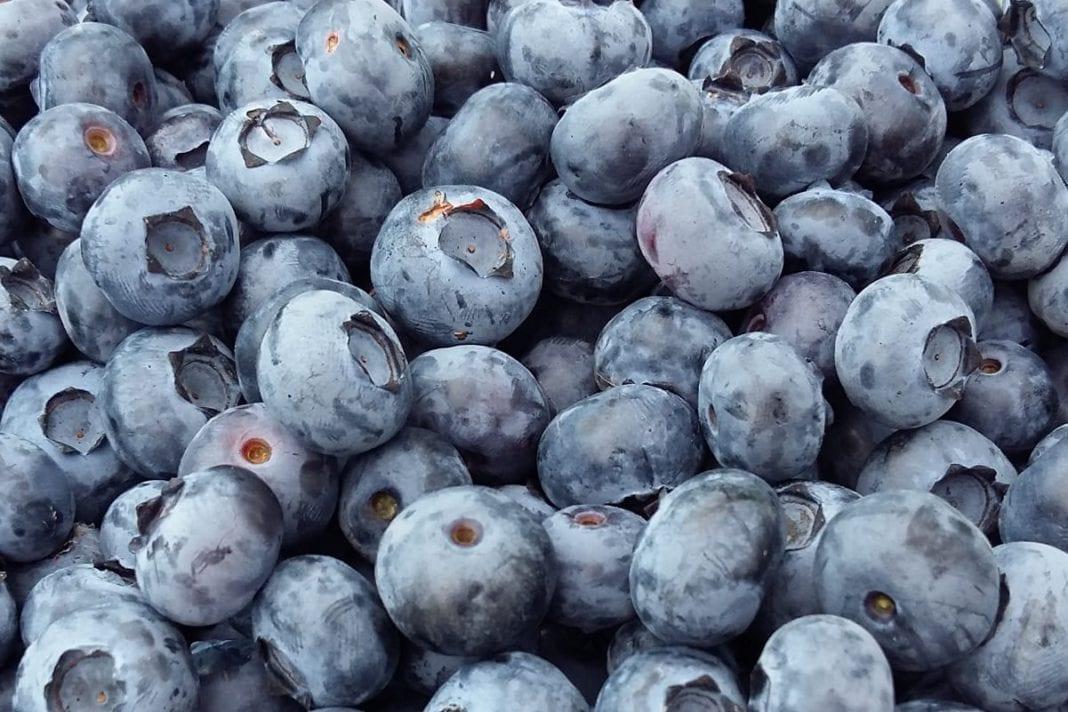 Ceny owoców jagodowych na Ukrainie