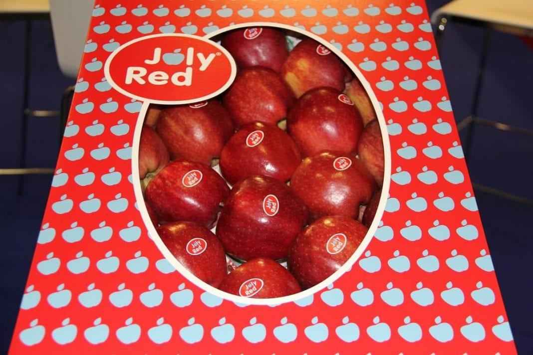 Nowe odmiany jabłek zastąpią stare. Teraz już co 10-15 lat?