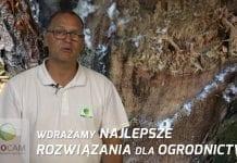 Komunikat sadowniczy – zalecenia PROCAM z 11.07.2017