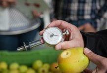 Przechowuj jabłka mądrze