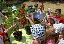 Skąd się biorą borówki? – warsztaty edukacyjne Fundacji Promocji Polskiej Borówki