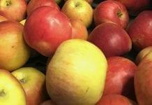 Cenne serbskie jabłka
