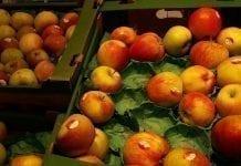 Ceny owoców na targowiskach i w dyskontach