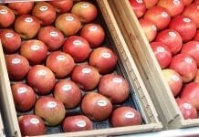 Ceny jabłek i gruszek: holenderskie markety prześcigają się w promocjach