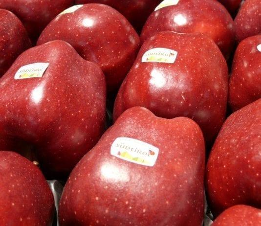 Zapasy jabłek w Południowym Tyrolu