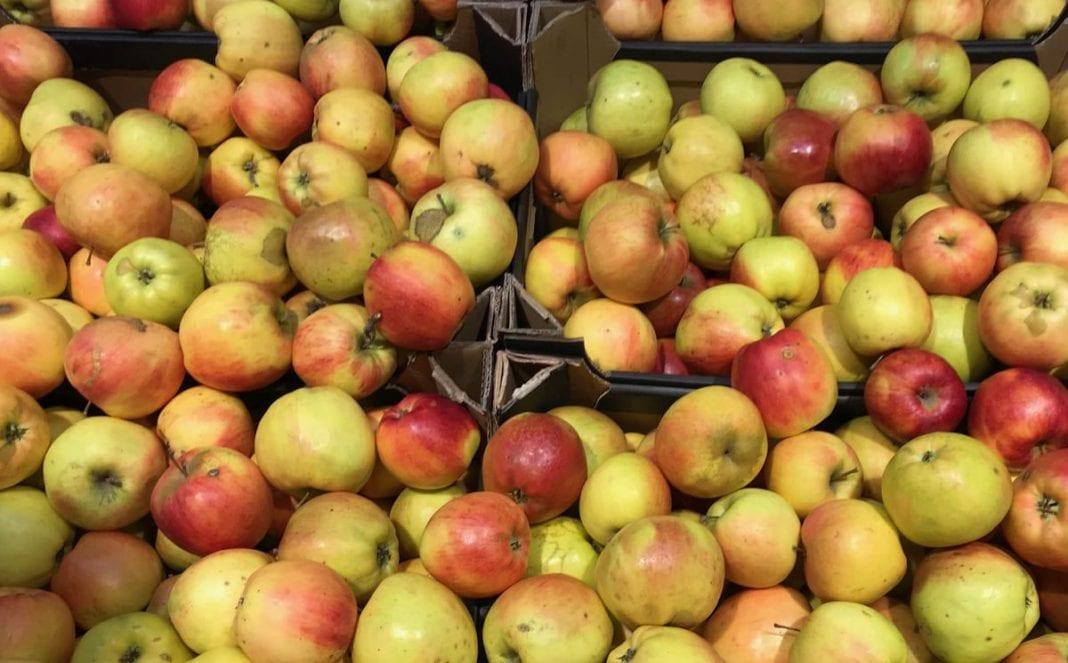 Mołdawia: jakość jabłek wyraźnie się pogorszyła