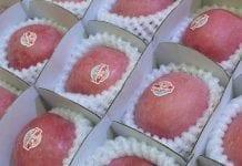Indie zmniejszają import jabłek. Trwa blokada dostaw z Chin