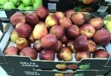 Ceny jabłek w serbskich marketach – początek grudnia
