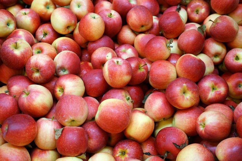 Rosną ceny jabłek w Rosji – liderami Gala i Golden Delicious